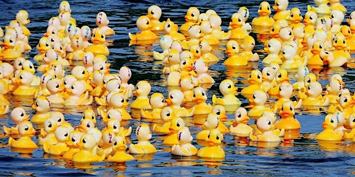 The Great Appomattox Duck Race and Festival