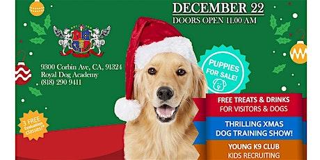 XMAS DOG PARTY at ROYAL DOG ACADEMY! tickets