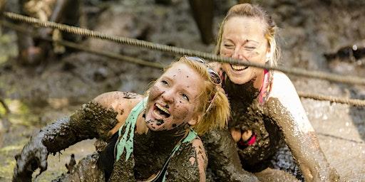 The Muddy Gator