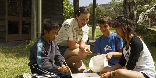 Junior Rangers Minibeast Discovery - Mount Buffalo National Park