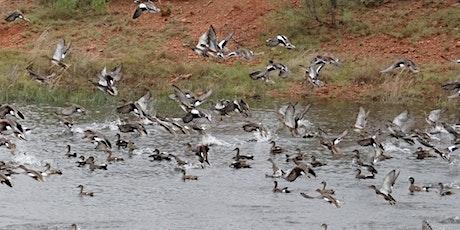 Jan. 4, 2020 - Abilene Member Duck Hunt tickets
