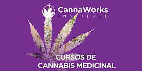 SAN JUAN | Cannabis Training Camp | CannaWorks Institute  entradas