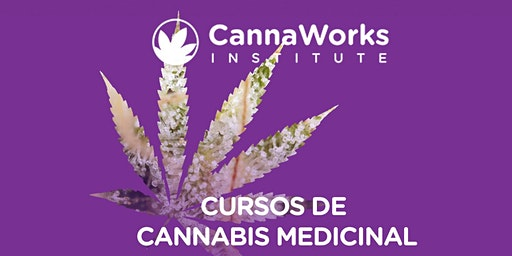 Cannabis Training Camp   CannaWorks Institute