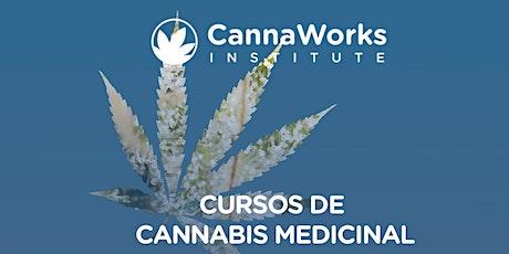 HUMACAO | Cannabis Training Camp | CannaWorks Institute entradas