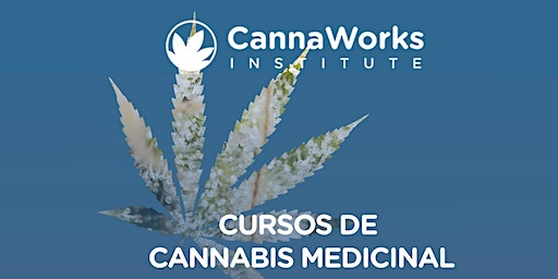 HUMACAO | Cannabis Training Camp | CannaWorks Institute
