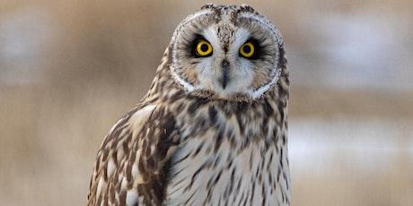 2020 Winter Owl Prowl tickets