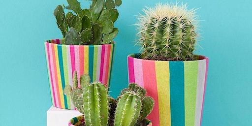 Striped Pot + Plant Workshop