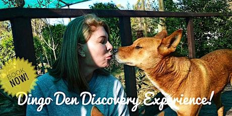 Dingo Den Discovery Experience tickets