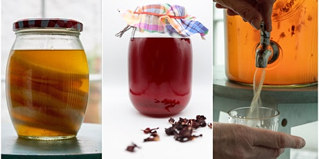 Kombucha Class - Learn how to make and manage your own brew. tickets