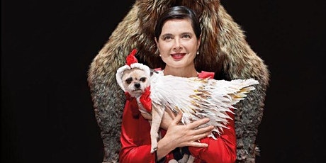 Link Link Circus by Isabella Rossellini tickets
