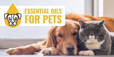 How to Use Essential Oils With Dogs & Cats (Webinar) tickets