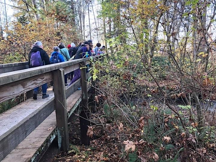 Morrison Creek Guided Walking Tour image