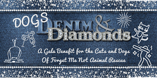 Dogs Denim & Diamonds