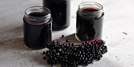 Elderberry Syrup Making & Herbs for Immunity