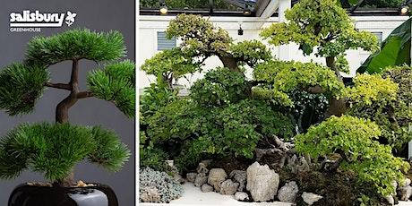 Penjing — Miniature Landscape Bonsai tickets
