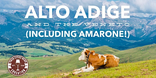 Wines of Alto Adige and the Veneto of Italy (including Amarone!)