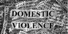 THE INTERSECTION OF DOMESTIC VIOLENCE AND HUMAN TRAFFICKING