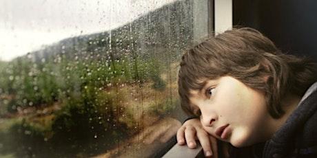 XII Jornada TDAH - TEA. Educación emocional e inclusión. Con opción Online entradas