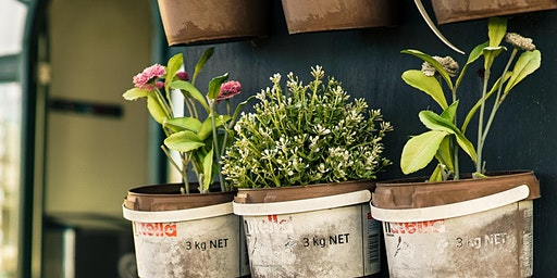 Grow your own garden workshop (Yarrabilba)
