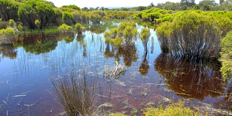 2020 WA Wetland Management Conference: call for registrations tickets