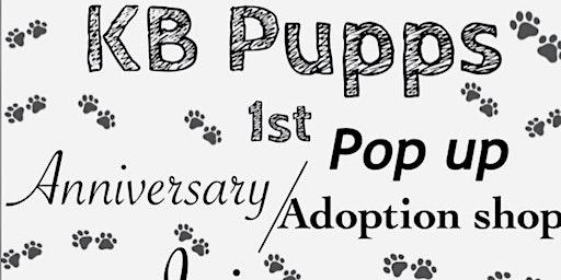 KB PUPPS POP UP\ ADOPTION SHOP