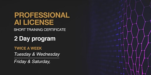 Professional Artificial Intelligence License