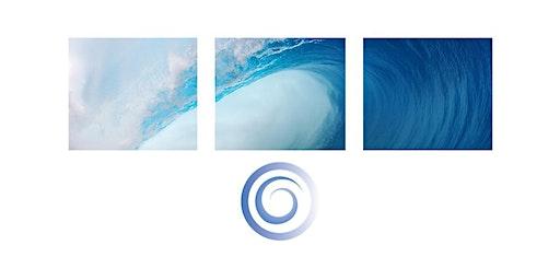 Environmental Interactions of Marine Renewables 2020 (EIMR2020)