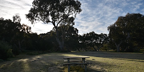 Summer Walks - Werribee River Park tickets