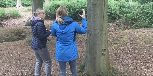 Course on Tour - South Yorkshire - Using Outdoor Learning to support Intent, Implementation & Impact (OFSTED 2019) - KS1, KS2