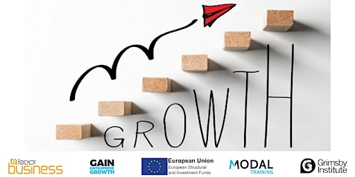 Developing your Business Growth Mindset - Part 2