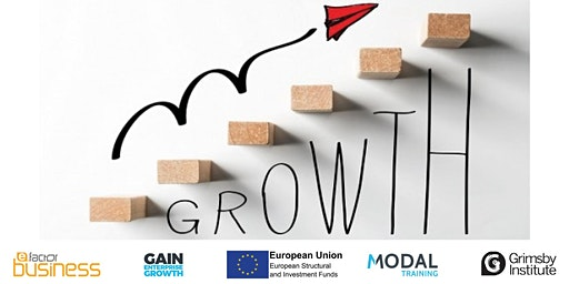 Developing your Business Growth Mindset - Part 3