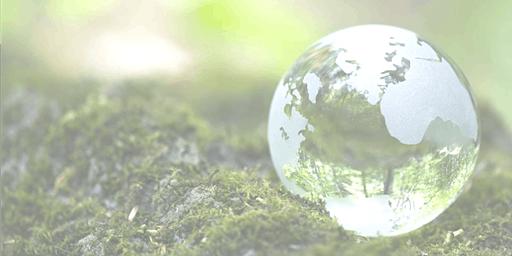 CORSO Auditor Sistemi di Gestione Ambientale ISO 14001