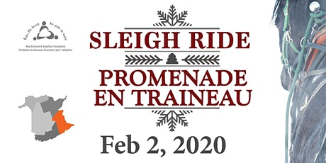 Southeast/Sud-est : Winter Sleighride - Promenade en traineau tickets