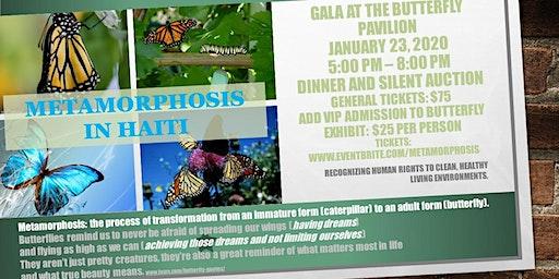 Metamorphosis in Haiti / Healthy, clean living environments