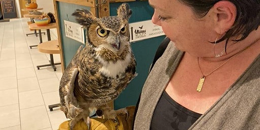 January Owl Prowl with the Center for Wildlife