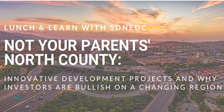 January Lunch & Learn with SDNEDC tickets