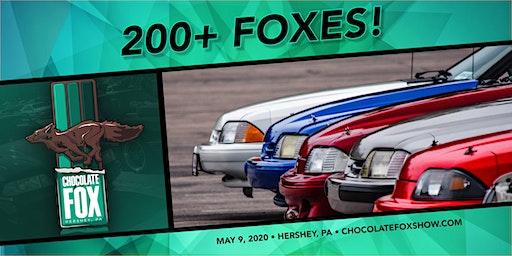 Chocolate Fox 2020
