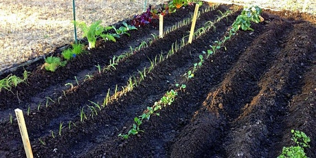 Designing your Vegetable Garden tickets