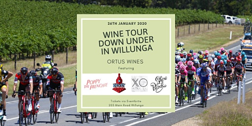 Wine Tour Down Under in Willunga