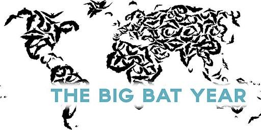 Nils Bouillard's Big Bat Year