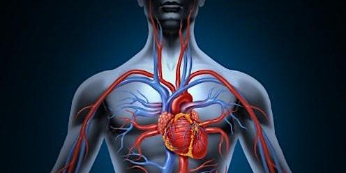 12-Lead EKG Interpretation - Stockton, February 13, 2020