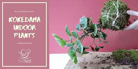 KOKEDAMA INDOOR PLANTS tickets
