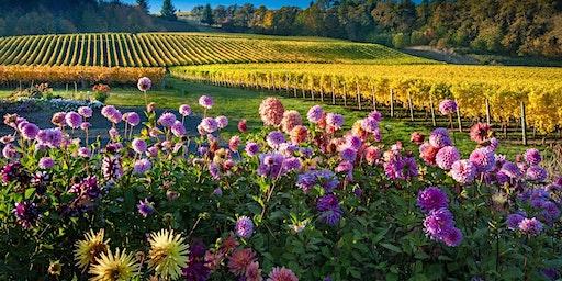Fermentation Class: Wines of Oregon