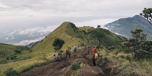 {Hiking Series} Indonesia - Mount Merbabu (3,145m) 2D1N Traverse + Camping Hike