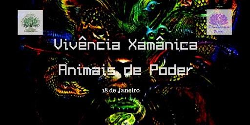 Animais de Poder - Vivência Xamânica