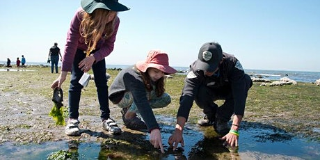Junior Rangers Living on the Edge of the Sea - Bear Gully tickets