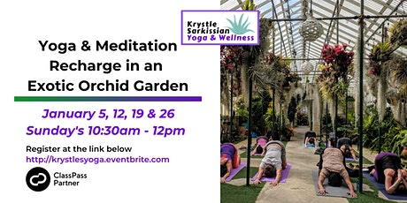 Yoga Recharge in an Exotic Orchid Garden (1/26) tickets