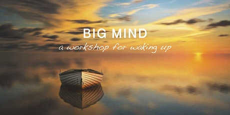 Big Mind workshop series 2020 (all 5 workshops) tickets