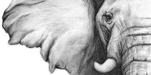 Elephant - Charcoal & Champaign Social Art Class