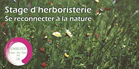 Stage d'Herboristerie : se reconnecter à la Nature - Initiation aux plantes aromatiques et médicinales  billets